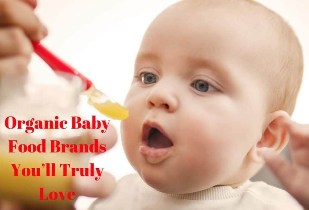 Organic Baby Food Brands You'll Truly Love