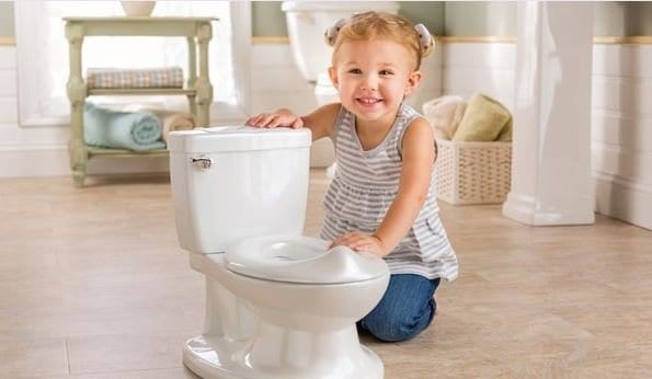 8 Best Toddler Potty Chairs