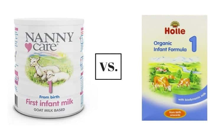 nannycare vs holle