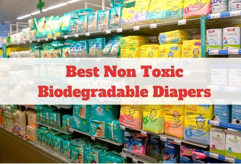 Best Non Toxic Biodegradable Diapers