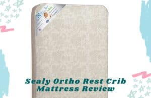 Sealy Ortho Rest Crib Mattress Review