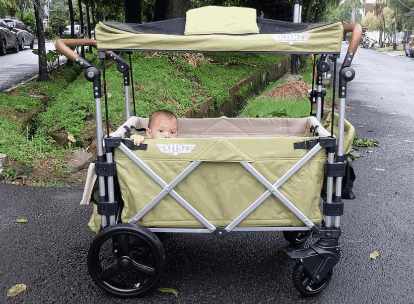 keenz wagon review
